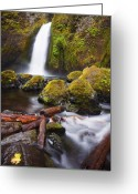 Gorge Greeting Cards - Wahclella Greeting Card by Mike  Dawson