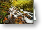 Creek Greeting Cards - Wahkeena Autumn Greeting Card by Mike  Dawson