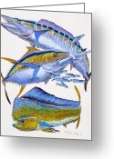 Mutton Greeting Cards - Wahoo Tuna Dolphin Greeting Card by Carey Chen