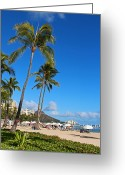 Waikiki Beach Greeting Cards - Waikiki Greeting Card by Kerri Ligatich