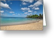 Northshore Greeting Cards - Waimea Bay Snorkeling site Greeting Card by Dan McManus