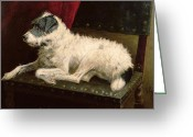 Loyal Greeting Cards - Waiting for Master Greeting Card by George Paice
