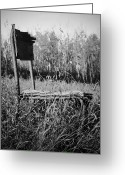 Vintage Photographs Greeting Cards - Waiting For Wind Two Greeting Card by Jerry Cordeiro
