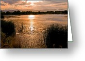 Brian Kerls Greeting Cards - Walden Ponds Sunset II Greeting Card by Brian Kerls