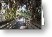Florida Bridge Greeting Cards - Walk in Peace Greeting Card by Sheila Silverstein