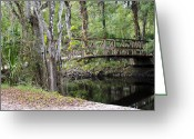 Florida Bridge Greeting Cards - Walk in the Park Greeting Card by Carolyn Marshall
