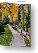 Fall Greeting Cards - Walk in the Park Greeting Card by Scott Hovind