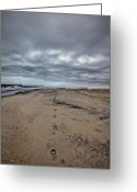 Long Island Greeting Cards - Walk the Line Greeting Card by Evelina Kremsdorf