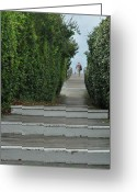 Stair Walk Greeting Cards - Walk The Plank Greeting Card by JAMART Photography