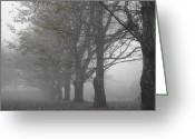 Bare Trees Greeting Cards - Walk with me Greeting Card by Georgia Fowler