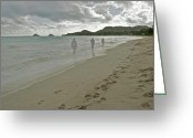 Northshore Greeting Cards - Walking Alone Greeting Card by Michael Peychich