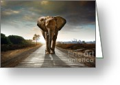 Protected Greeting Cards - Walking Elephant Greeting Card by Carlos Caetano