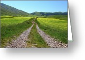 Dirt Road Greeting Cards - Walking In Castelluccio Greeting Card by Danilo Antonini www.flickr.com/photos/danilo_antonini