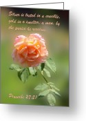 Flower Blossom Greeting Cards - Warm Peace Rose Pro. 27v21 Greeting Card by Linda Phelps
