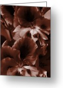 Bruster Greeting Cards - Warm Tone Monochrome Floral Art Greeting Card by Clayton Bruster