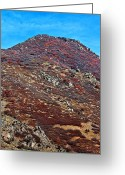 Foothill Greeting Cards - Wasatch Mountains In Ogden Utah Greeting Card by Tracie Kaska