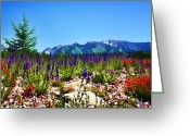 Snow Capped Digital Art Greeting Cards - Wasatch Mountains In Spring Greeting Card by Tracie Kaska