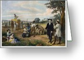 Custis Greeting Cards - Washington The Farmer Greeting Card by Granger