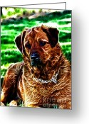 German Shepard Digital Art Greeting Cards - Watching with Intent Greeting Card by Denise Oldridge