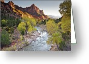 Tree Greeting Cards - Watchman In Zion National Park Greeting Card by Photo By Daryl L. Hunter - The Hole Picture