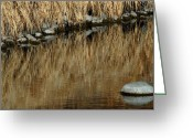 Colored Photographs Greeting Cards - Water Colored  Greeting Card by Steven Milner