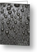 Dark Greeting Cards - Water Drops Greeting Card by Frank Tschakert