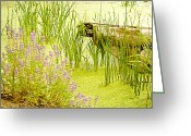 Water Gardens Greeting Cards - Water Gardens Greeting Card by Bonnie Bruno