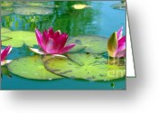 Flowers Greeting Cards - Water Lilies Greeting Card by Ben and Raisa Gertsberg