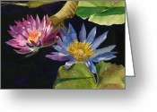 Waterlilies Greeting Cards - Water Lilies Greeting Card by Lynne Reichhart