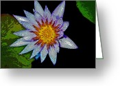 Water Lilly Greeting Cards - Water Lilly Paint Greeting Card by Steve McKinzie
