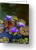 Blue Flowers Greeting Cards - Water Lily Trio Greeting Card by Kerri Ligatich
