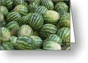Melon Greeting Cards - Water melons Greeting Card by Andrew  Michael