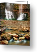 Tamyra Ayles Greeting Cards - Water Path Greeting Card by Tamyra Ayles