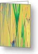 Reeds Reflections Greeting Cards - Water Reeds Soft Greeting Card by Beth Akerman