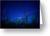 Water Framed Prints Posters Greeting Cards - Water World Greeting Card by Jerry Cordeiro