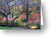 Autumn In The Country Photo Greeting Cards - Watercolor Forest Greeting Card by Lorraine Devon Wilke