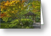 Japanese Maple Greeting Cards - Watercolor Gardens Greeting Card by Joan Carroll