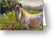 Equine Watercolor Portrait Greeting Cards - Watercolor Horse Greeting Card by Svetlana Novikova