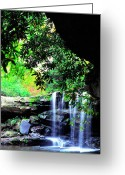 Trout Stream Greeting Cards - Waterfall and Rhododendron Greeting Card by Thomas R Fletcher