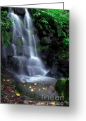 Outside Photo Greeting Cards - Waterfall Greeting Card by Carlos Caetano