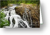 Waterfalls Greeting Cards - Waterfall in wilderness Greeting Card by Elena Elisseeva