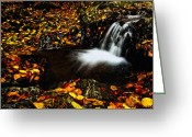Drop Pyrography Greeting Cards - Waterfall Greeting Card by Irinel Cirlanaru