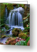 Idyllic Greeting Cards - Waterfall Greeting Card by Patti Sullivan Schmidt