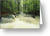 Time Exposures Greeting Cards - Waterfall Time Exposure,   Bayerischer Greeting Card by Norbert Rosing