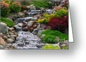 Photographer Photographs Photographs Greeting Cards - Waterfall Greeting Card by Tom Prendergast