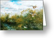 Sportsmen Greeting Cards - Waterfowl Greeting Card by Pg Reproductions