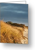 Ocean Front Greeting Cards - Waterfront Beach Cottage Greeting Card by John Greim