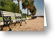 Path Greeting Cards - Waterfront Park Bench  Greeting Card by Drew Castelhano