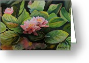 Cal Kimola Greeting Cards - Waterlilies at Pass Lake BC Greeting Card by Cal Kimola