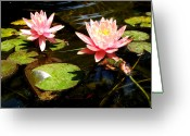 Escobar Greeting Cards - Waterlillies Greeting Card by Laurette Escobar